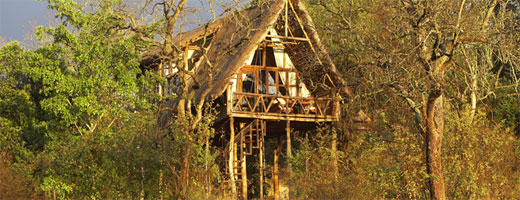 treehouse-ngong