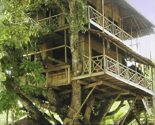 treehouse-papuang